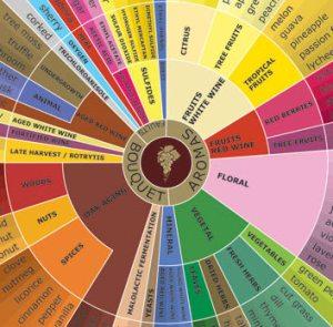 Aroma wheel inner circle