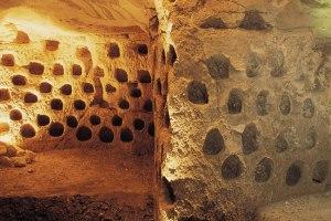 מערות גידול יונים